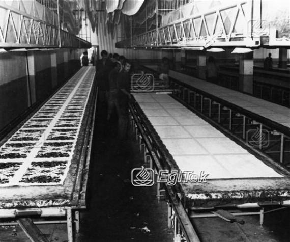 Havlu Dokuma Fabrikası, 1983
